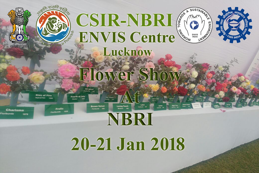 Rose & Gladiolus Flower Show 20th-21th Jan 2018