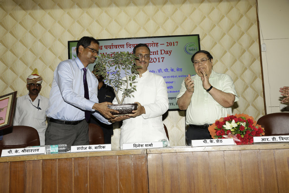 World Environment Day Celebrated on 5th 2017